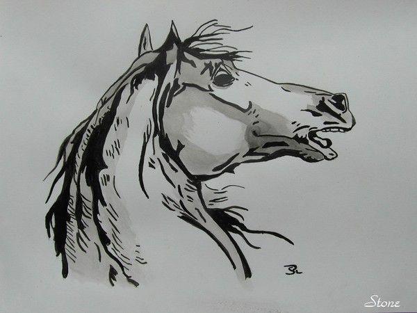 Dessins page 2 - Dessin tete de cheval ...